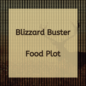 Blizzard Buster