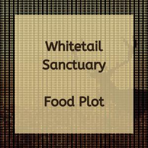 Whitetail Sanctuary