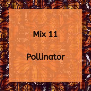 Pollinator Mix 11