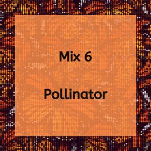 Pollinator Mix 6